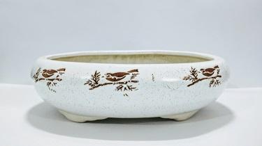 bonsai pot manufacturer in khurja